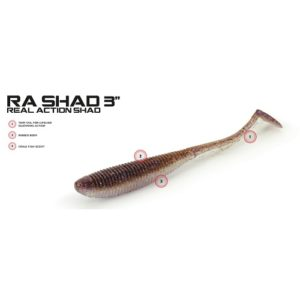 Molix RA Shad 3